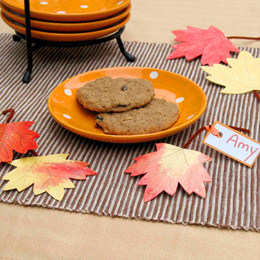 autumn-fairy-leaf-table-toppers-craft-photo-260x260-clittlefield-D